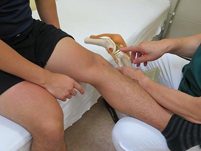 膝の治療に力を入れています